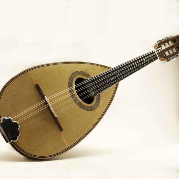 pickup microphone mandolin